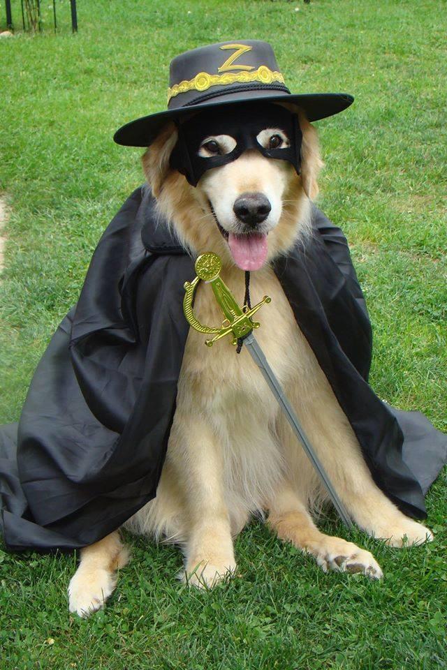 Tsorro Zorro
